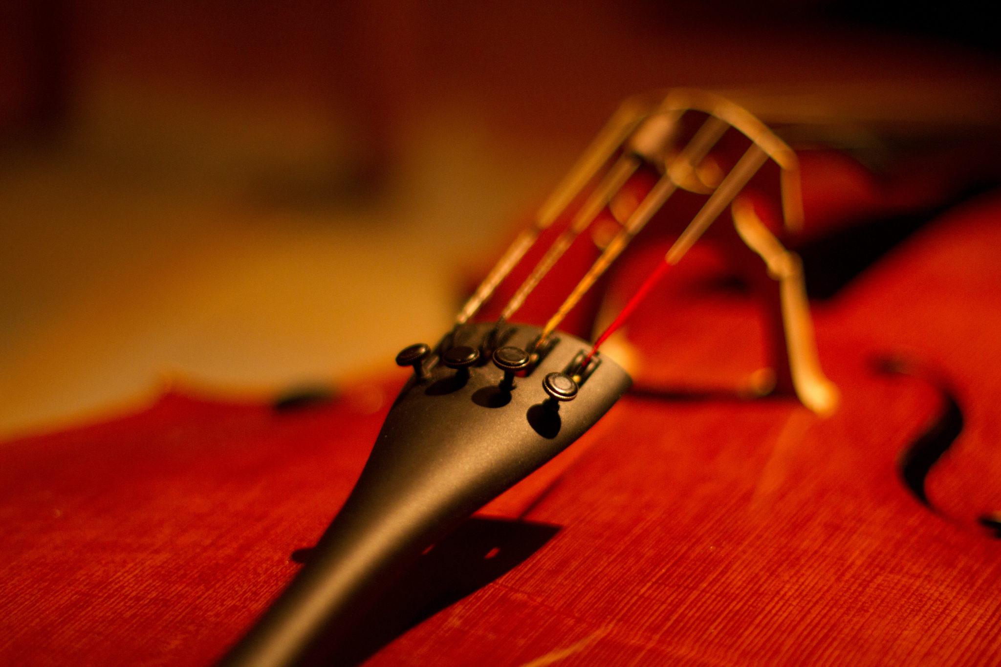Jan Menzel - Cellist und Musikunterricht